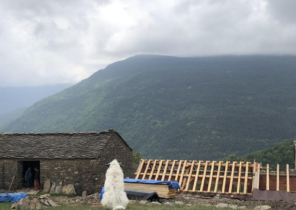 キャンピングカーでピレネー山脈オルデッサ国立公園とアジェルベの廃村へ。2018年5月24日~28日