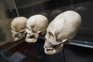 クスコ、マチュピチュ博物館