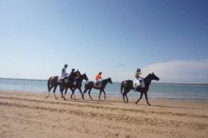 サンルーカルデバラメダのビーチ競馬