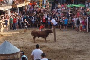 グアダルーペの闘牛祭り