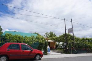 サンチアゴの道パラスデレイからアルスア