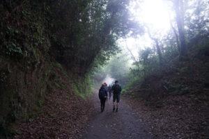 サンチアゴの道オーペドローサからサンチアゴ